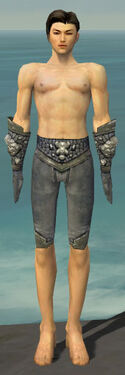 Elementalist Stoneforged Armor M gray arms legs front