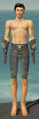 File:Elementalist Stoneforged Armor M gray arms legs front.jpg