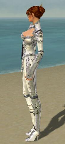 File:Elementalist Tyrian Armor F gray side.jpg