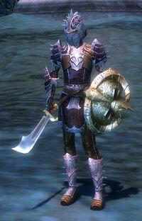 Vanguard Warrior2