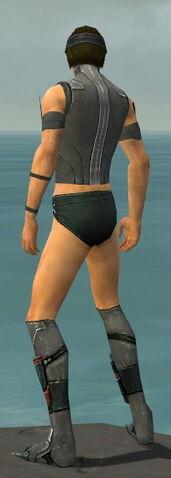 File:Assassin Canthan Armor M gray chest feet back.jpg