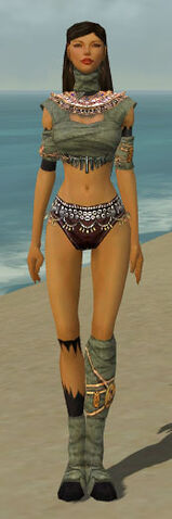 File:Ritualist Ancient Armor F gray chest feet front.jpg