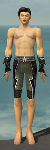 File:Elementalist Shing Jea Armor M gray arms legs front.jpg