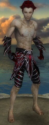 File:Necromancer Luxon Armor M gray arms legs front.jpg