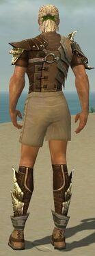Ranger Asuran Armor M gray chest feet back