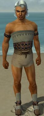 Dervish Obsidian Armor M gray chest feet front
