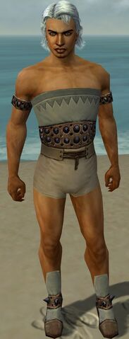 File:Dervish Obsidian Armor M gray chest feet front.jpg