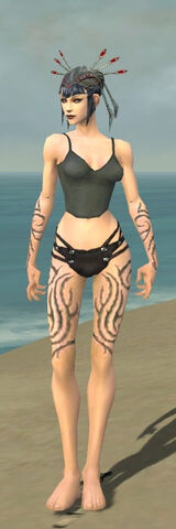 File:Necromancer Scar Pattern Armor F gray arms legs front.jpg