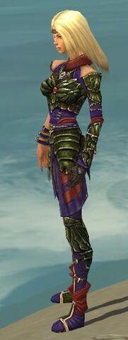 File:Ranger Elite Luxon Armor F dyed side.jpg