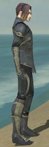 File:Elementalist Ascalon Armor M gray side.jpg