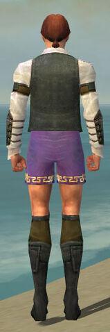 File:Mesmer Ascalon Armor M gray chest feet back.jpg
