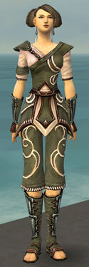 Monk Shing Jea Armor F gray front