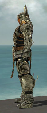 Warrior Elite Sunspear Armor M gray side