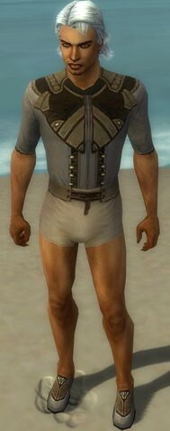 File:Dervish Asuran Armor M gray chest feet front.jpg
