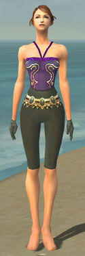 Mesmer Krytan Armor F gray arms legs front