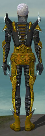 File:Necromancer Profane Armor M dyed back.jpg