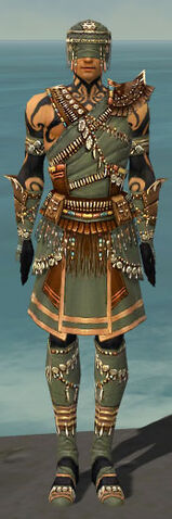 File:Ritualist Imperial Armor M gray front.jpg