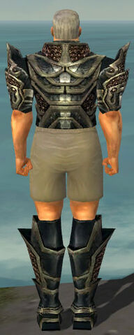 File:Warrior Elite Kurzick Armor M gray chest feet back.jpg