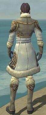 Elementalist Norn Armor M gray back