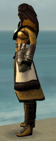 File:Ranger Norn Armor F dyed side.jpg