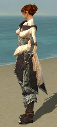 File:Elementalist Ancient Armor F gray side.jpg