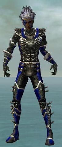File:Necromancer Kurzick Armor M dyed front.jpg