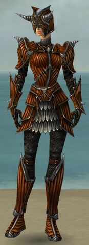 File:Warrior Wyvern Armor F dyed front.jpg