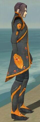 File:Elementalist Tyrian Armor M dyed side.jpg