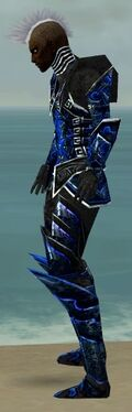 Necromancer Fanatic Armor M dyed side