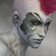 File:Necromancer Kurzick Armor M gray head right.jpg