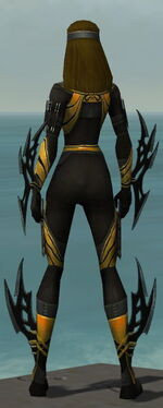 Assassin Vabbian Armor F dyed back