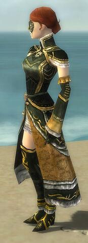File:Mesmer Elite Sunspear Armor F gray side.jpg