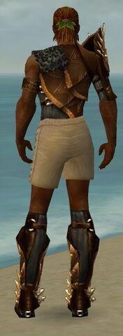 File:Ranger Elite Sunspear Armor M gray chest feet back.jpg