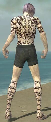 File:Necromancer Elite Scar Pattern Armor M gray chest feet back.jpg