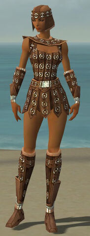 File:Warrior Ascalon Armor F dyed front.jpg