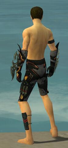 File:Assassin Elite Kurzick Armor M gray arms legs back.jpg