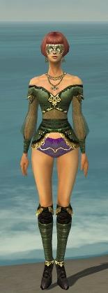 File:Mesmer Luxon Armor F gray chest feet front.jpg