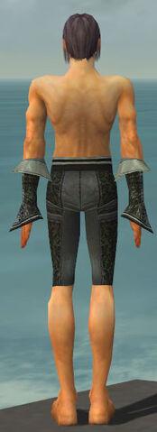 File:Elementalist Elite Canthan Armor M gray arms legs back.jpg