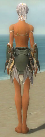 File:Paragon Norn Armor F gray arms legs back.jpg