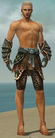 File:Ranger Luxon Armor M gray arms legs front.jpg
