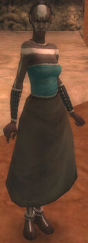Wandering Priest female