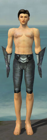 File:Elementalist Stormforged Armor M gray arms legs front.jpg