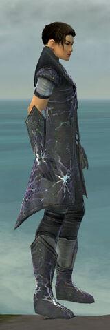 File:Elementalist Stormforged Armor M gray side.jpg
