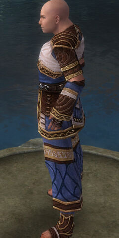 File:Monk Elite Canthan Armor M dyed side.jpg