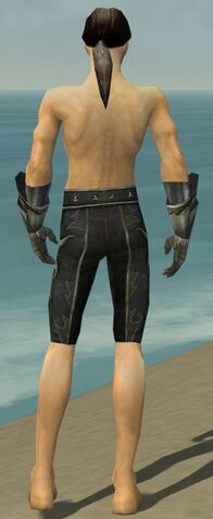 File:Elementalist Elite Flameforged Armor M gray arms legs back.jpg