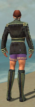 Mesmer Canthan Armor M gray chest feet back