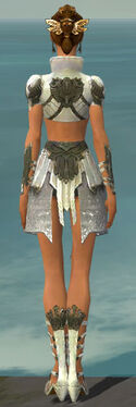 Paragon Elonian Armor F gray back