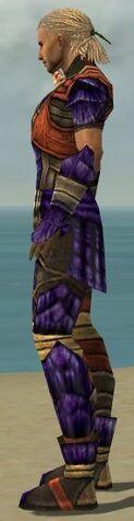 File:Ranger Elite Drakescale Armor M dyed side.jpg