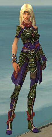 File:Ranger Elite Luxon Armor F dyed front.jpg