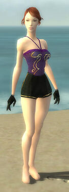 Mesmer Elite Sunspear Armor F gray arms legs front